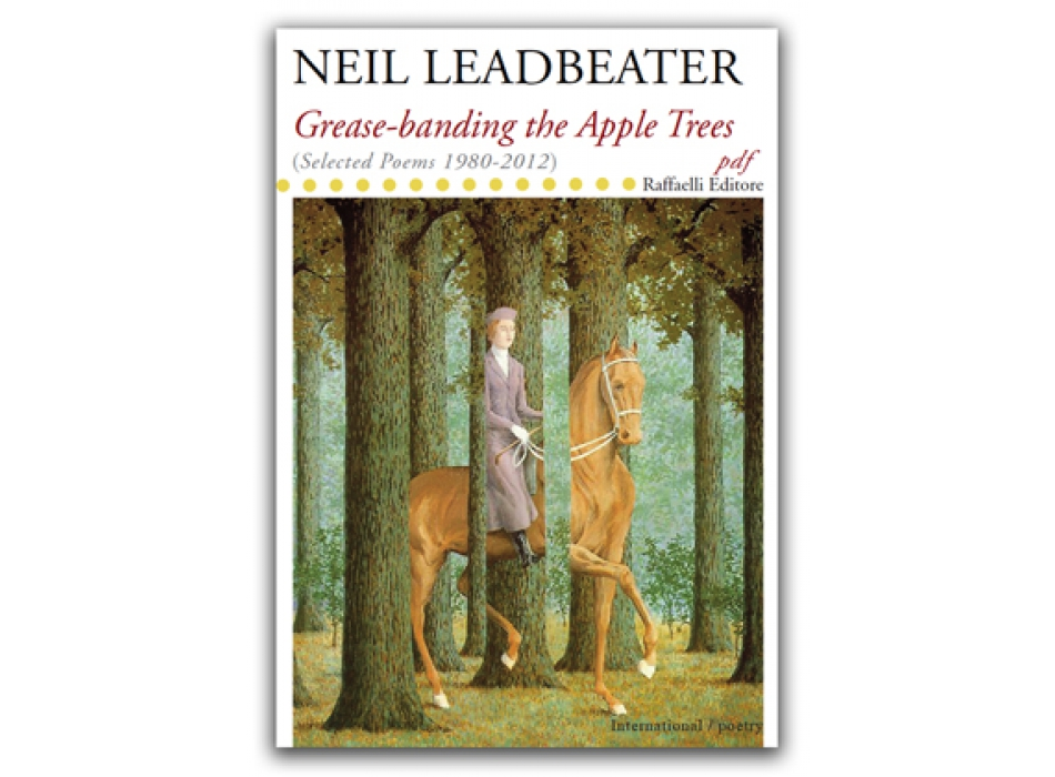Grease-banding the apple trees