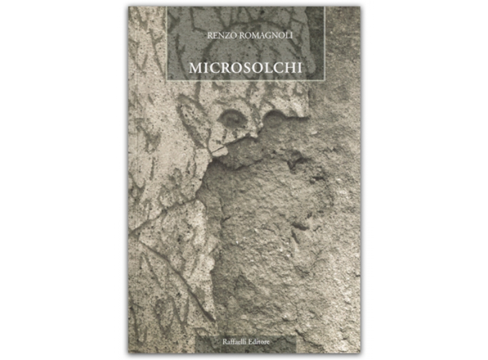 Microsolchi